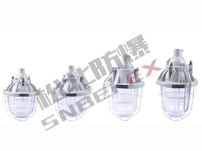 BCD53 series explosion-proof explosion-proof lamp