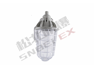 BAD62-250 series explosion-proof lamp