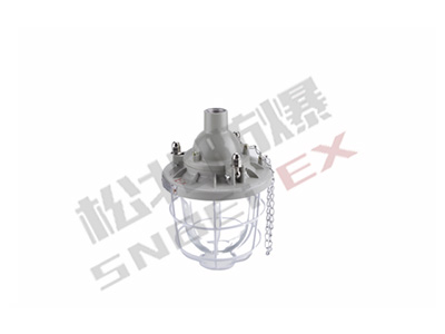 BCD_200 Series Explosion-proof lights