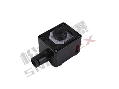 BK-10-1  series explosion-proof anti-corrosion switch (II C. DIP)